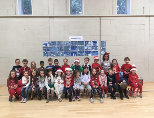 It's been a busy first term in Senior Infants